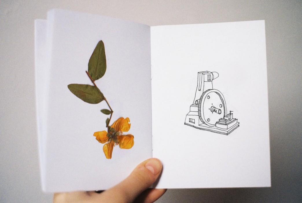 marija-strajnic-in-bloom-6