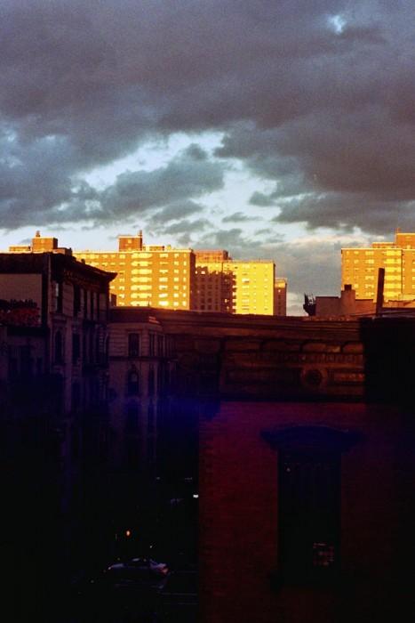 marija-strajnic-ana-kras-lit-gold-1
