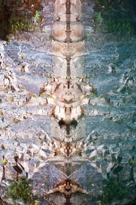 marija-strajnic-butterfly-3