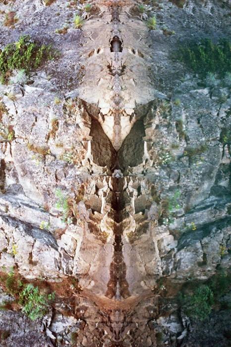 marija-strajnic-butterfly-5