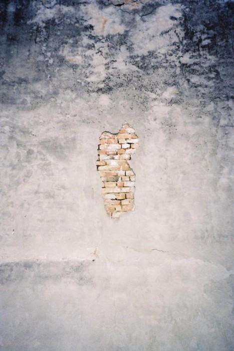 marija-strajnic-grow-back-bricks